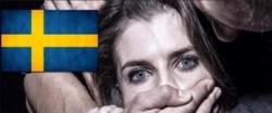 mj410-sweden-top