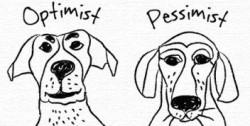dogoptimist